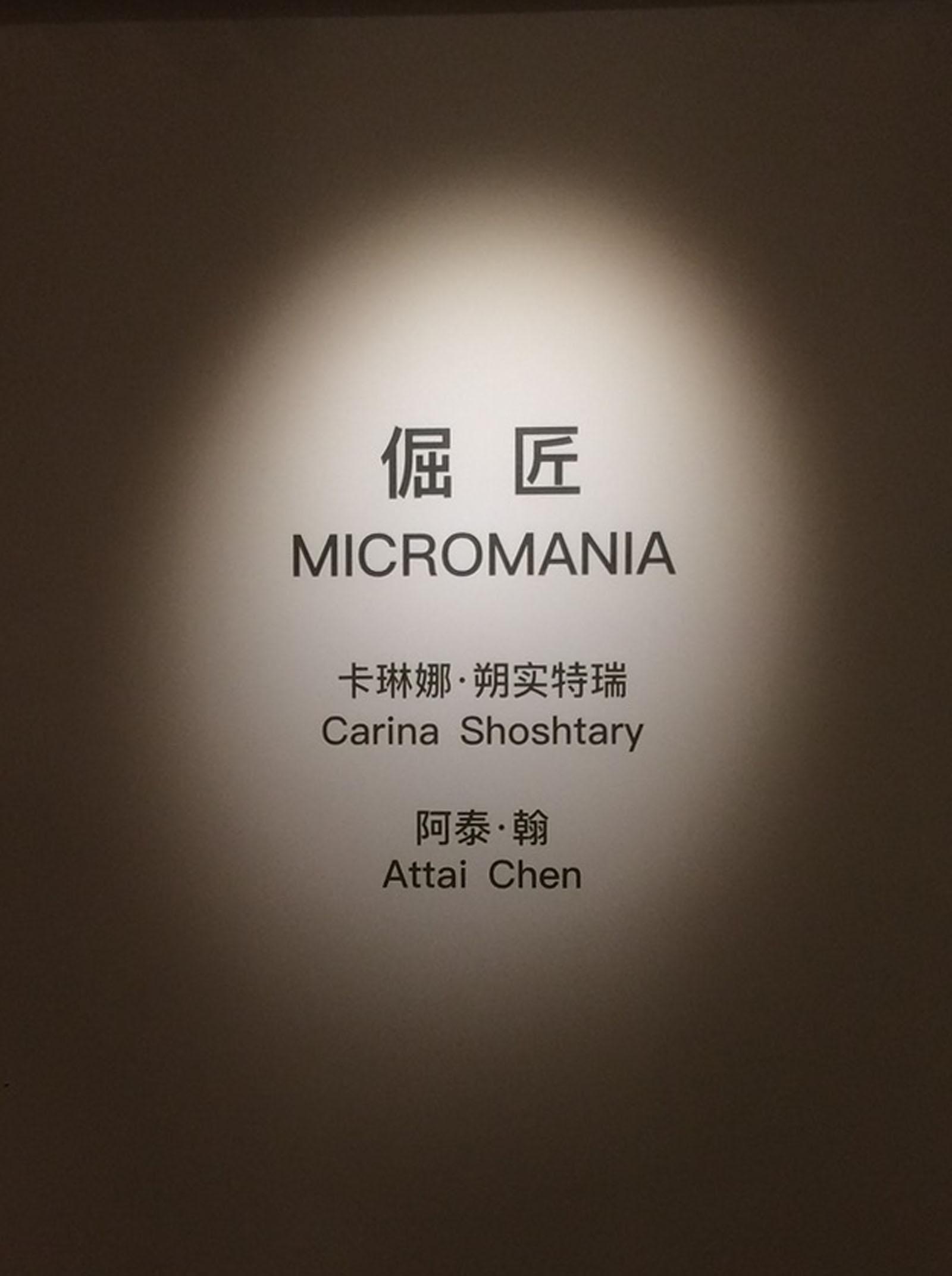 """Micromania"" I A duo show of Attai Chen and Carina Shoshtary I 2017/2018 I Froots & Nogart, Shanghai, China I Photo: Froots"